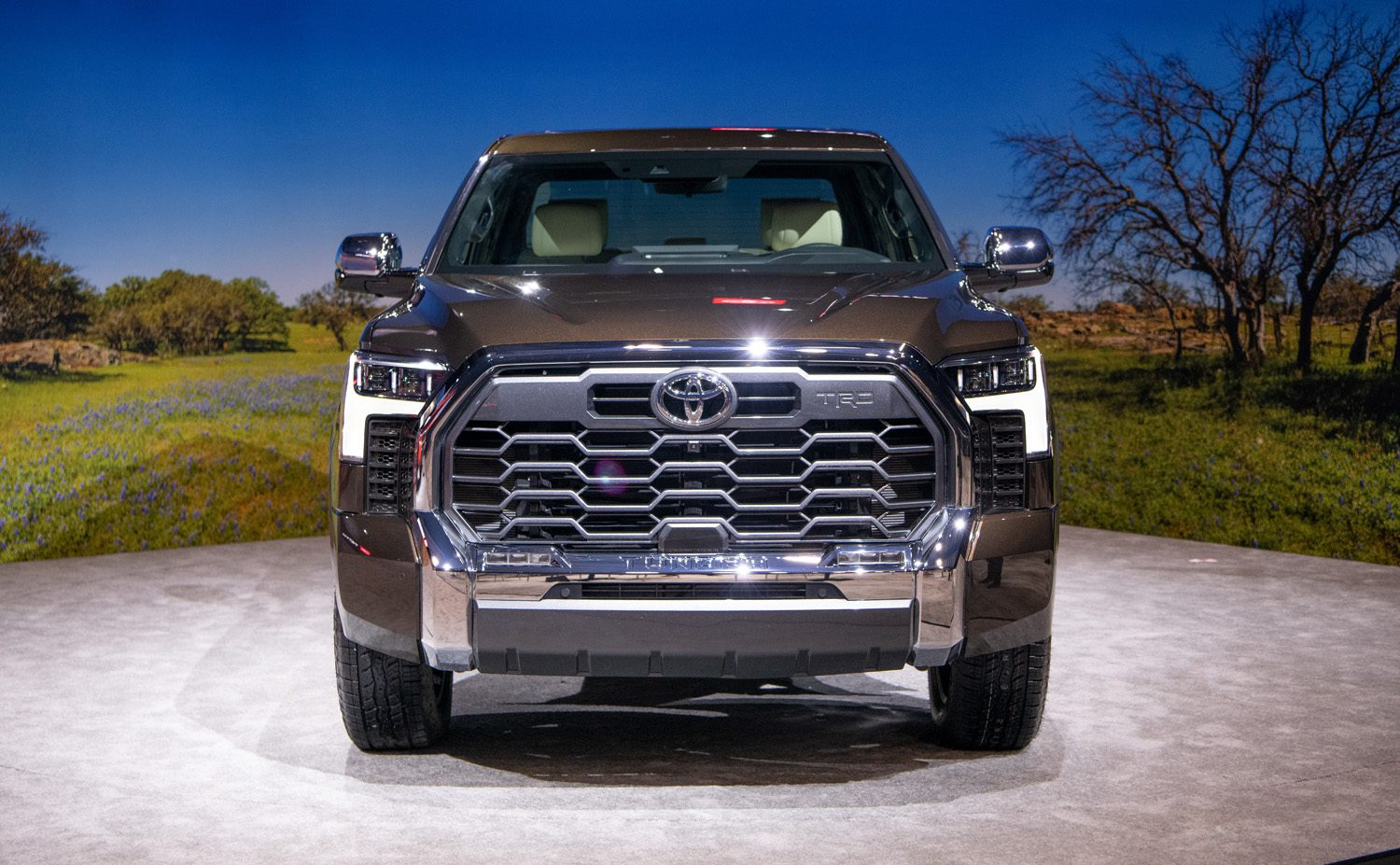 1794 Tundra Grille